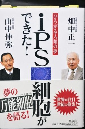 Ips_2