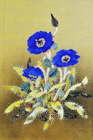 30419180702_blue_poppy2008