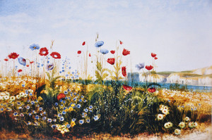 15andrew_nicholl180486poppies_and_w