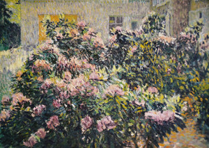 148831951rhododendrons1911