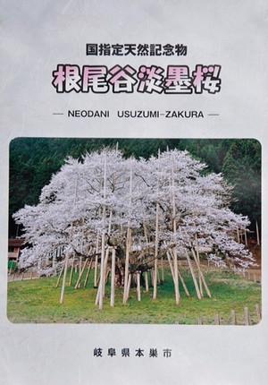 11_leaflet